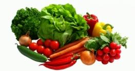 Pegane Ernährung Regeln